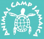 Animal Camp Jamaica